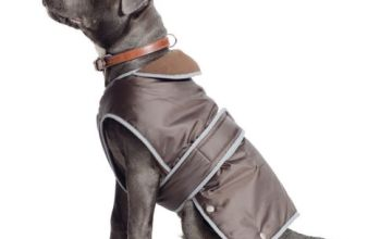 Ancol Muddy Paws Coat and Chest Protector, Chocolate, Medium