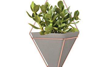 Umbra Trigg Hanging Planter Vase & Geometric Wall Decor Container - Great For Succulent Plants,  Air Plant,  Mini Cactus,  Faux Plants and More,  Concrete Resin/Copper (Large)