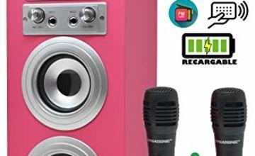 Dynasonic - Bluetooth portable karaoke speaker 10W, 2 microphones included, FM radio, USB/SD player - Model 025, pink color