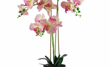 Save on Leaf Large Artificial Orchid, Mixed Materials, 70cm Light Pink and more