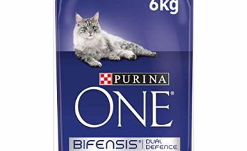 10% off Purina ONE Dry Cat Food