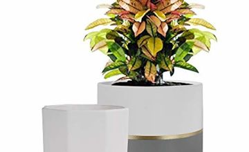 La Jolíe Muse Plant Pot Indoor - H16.5cm Ceramic Flower Pot 2 Pack for Garden Planters Decor