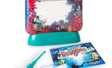 Aqua Dragons Underwater World Aquarium
