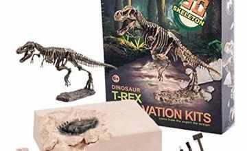 ALLCELE Dinosaur Fossil Archaeological Excavation Toys,learning toys for kids,Best gift for boys& girls