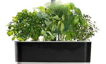 51% off AeroGarden Harvest Slim with Gourmet Herb Seed Pod Kit