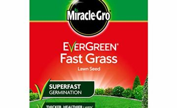 Over 10% off Fast Grass Lawn Seed
