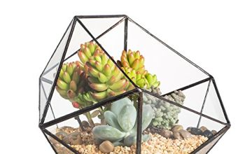Modern Handmade Triangular Half Ball Glass Geometric Terrarium Balcony Bowl Shape Flower Pot Window Sill Miniature Container Table Top Centerpiece Display Planter for Succulents (No Plants Included)