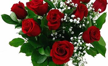 Up to 31% off fresh cut roses for Valentine's Day