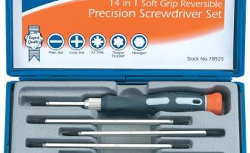 Draper Expert 78925 14 in 1 Reversible Precision Screwdriver Set