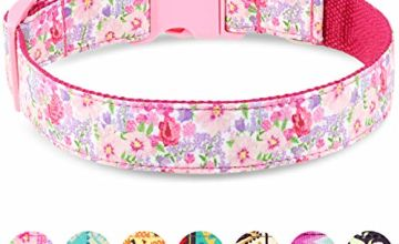 Taglory Unique Designer Soft Dog Collars, Western Pattern Puppy Small Medium Large Collar for Boy Girl Dogs