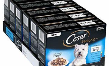 15% off Cesar Fresh Wet Dog Food