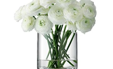 LSA International LW20 Lotta Vase/Lantern Clear & Ash Base H18cm *