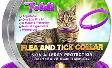 Flea Treatment for Dogs & Cats Adjustable Dog & Cat Collar Small Medium Large | 8 Months Tick and Lice Repellent for Puppy & Kitten | Waterproof Pet Spot On Protection & Allergy Free