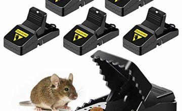 Ales plastic mouse traps