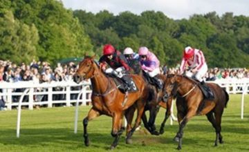 2 for 1 Winning Raceday Package - Special Offer