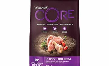 Save on Wellpet Dry Dog Food