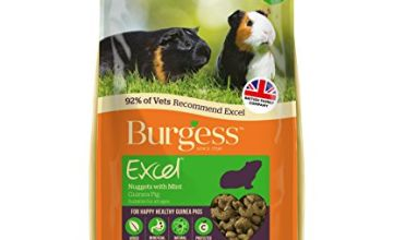 Burgess Excel Nuggets with Mint Guinea Pig Food 10 kg