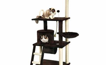 Up to 15% off Pet products from AmazonBasics and more