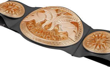 WWE Championship Belts Assortment