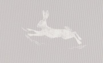 Argos Home Hare Print Daylight Roller Blind