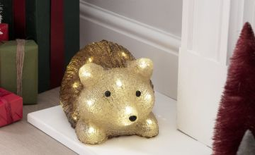 Argos Home Warm White Acrylic Light Up LED Hedgehog