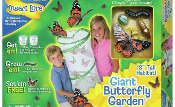 Insect Lore Giant Live Butterfly Garden