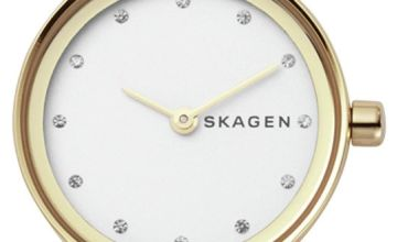 Skagen Ladies Freja Two Tone Mesh Strap Watch