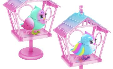 Little Live Pets Lil' Bird and House Playset