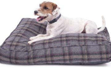 Petface Grey Tweed Mattress Pet Bed - Medium