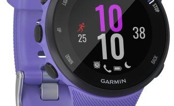 Garmin Forerunner 45 Running Watch