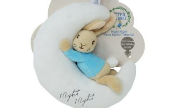 Beatrix Potter Night Night Peter Rabbit Toy