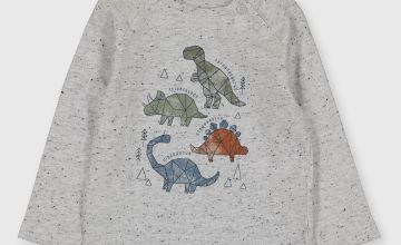 Grey Geo Dinosaur Long Sleeve Top