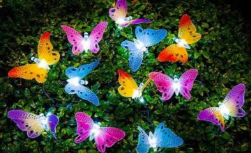£7.50 instead of £29.99 (from WowWhatWho) for a set of 12 LED butterfly lights – save 75%