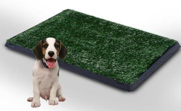 £14.99 instead of £45 (from MHStar) for an indoor pet toilet training mat - choose from two sizes and save up to 67%