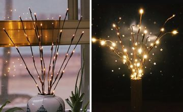 £6.99 instead of £29.99 (from Turbo Dealz) for an artificial LED willow branch with LED lights, or £10.99 for two branches - save up to 77%