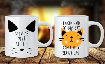 £4.99 instead of £12.99 (from Deco Matters) for a novelty cat mug or £8.99 for two – save up to 62%