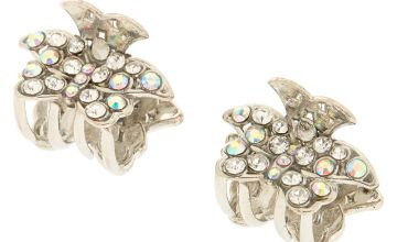 Go to Product: Silver Crystal Butterfly Clips