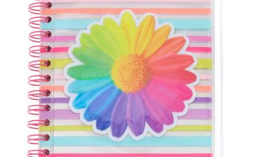 Go to Product: Rainbow Striped Daisy Pencil Case Journal Set