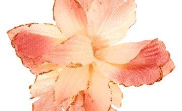 Go to Product: Velvet Glitter Flower Hair Clip - Blush Pink