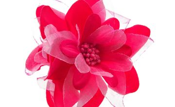 Go to Product: Double Lily Feather Hair Clip - Pink