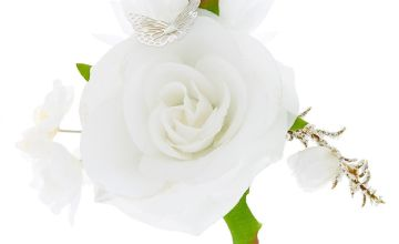 Go to Product: Butterfly Flower Cluster Hair Clip - White