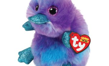 Go to Product: Ty Beanie Boo Medium Zappy the Platypus Soft Toy