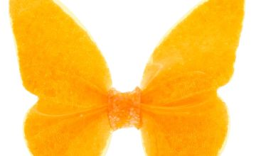 Go to Product: Neon Butterfly Hair Clip - Orange