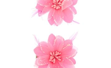 Go to Product: Sequin Lily Flower Hair Clips - Neon Pink, 2 Pack