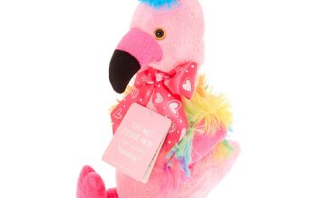 Go to Product: Claire's Club Dancing & Singing Flamingo Soft Toy