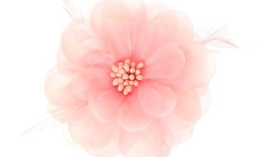 Go to Product: Lily Feather Hair Clip - Blush Pink