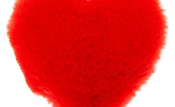 Go to Product: Plush Heart Notebook - Red