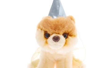 Go to Product: Boo The World's Cutest Dog™ Small Princess Soft Toy - Cream