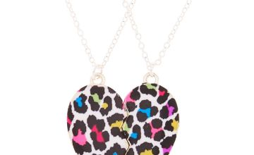 Go to Product: Best Friends Rainbow Leopard Pendant Necklaces - 2 Pack