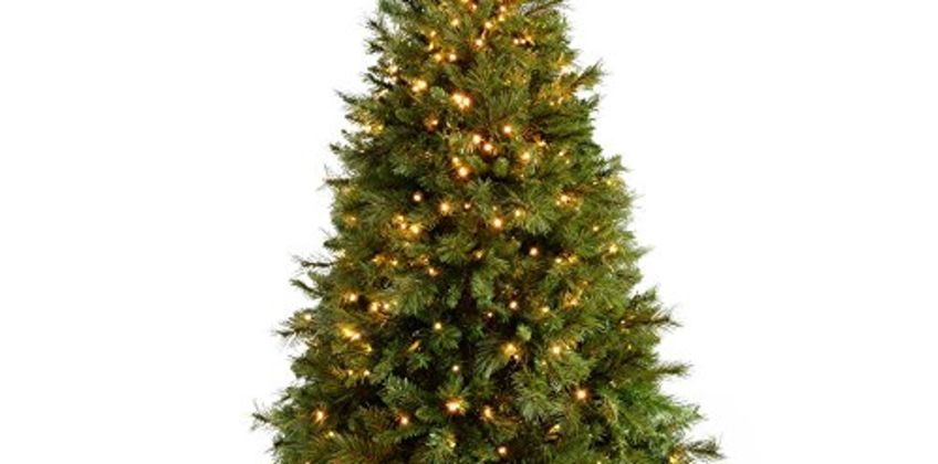 Up to 20% off Christmas Trees from Amazon